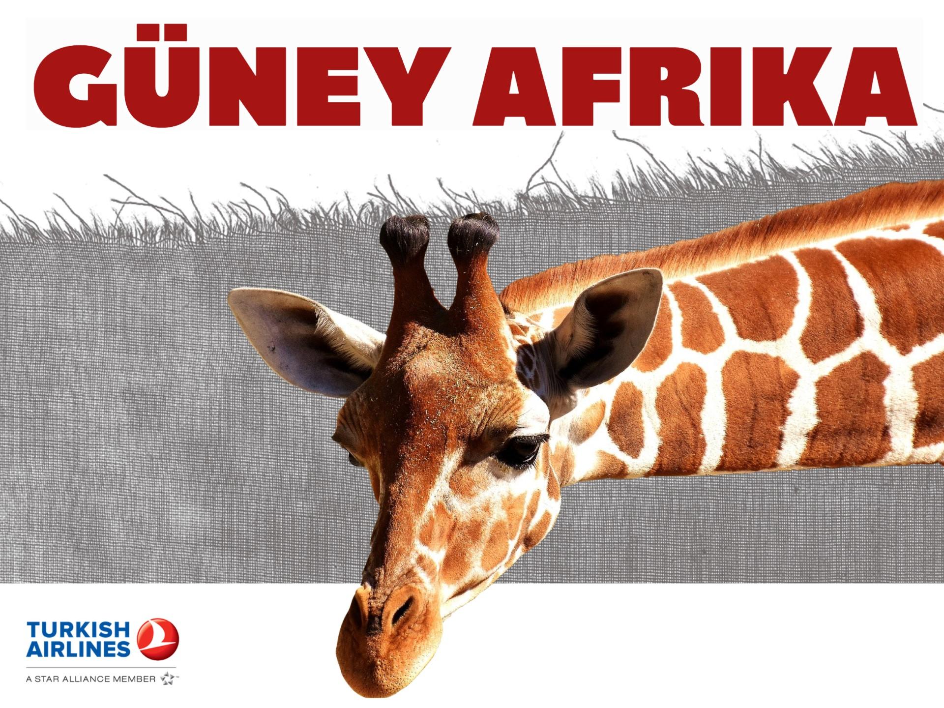 GÜNEY AFRİKA TURLARI-THY- 9 GÜN KAMPANYALI