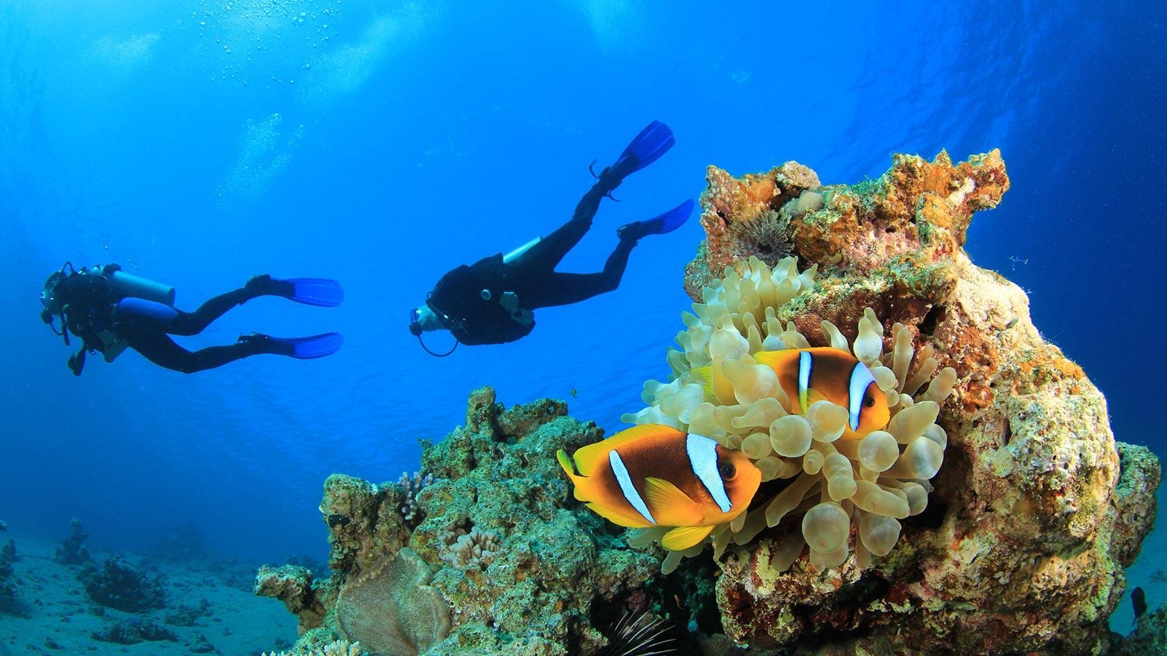 Alanya Diving Tours