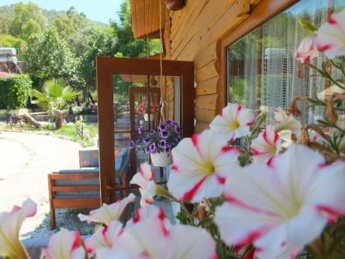 Utopia Lodge Otel