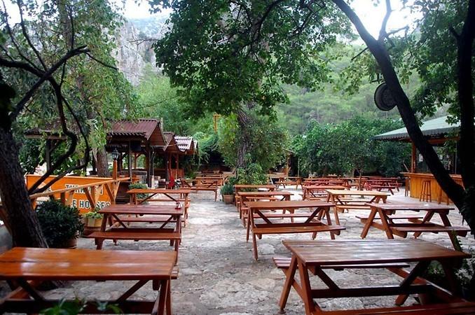 Türkmen Tree Houses