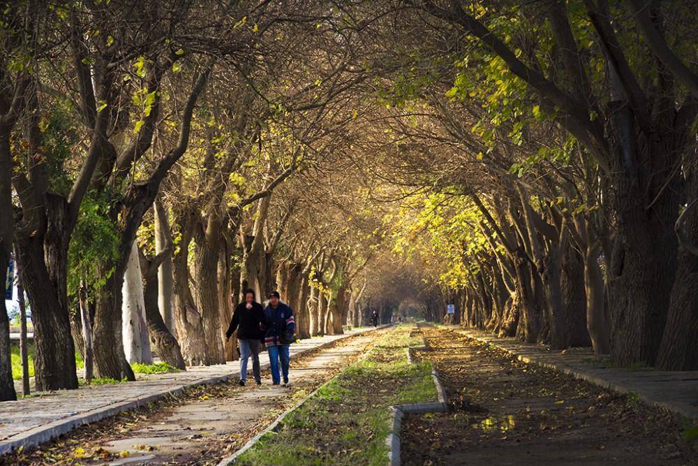 Kusadası, Cesme, Pamukkale, Izmir Tour