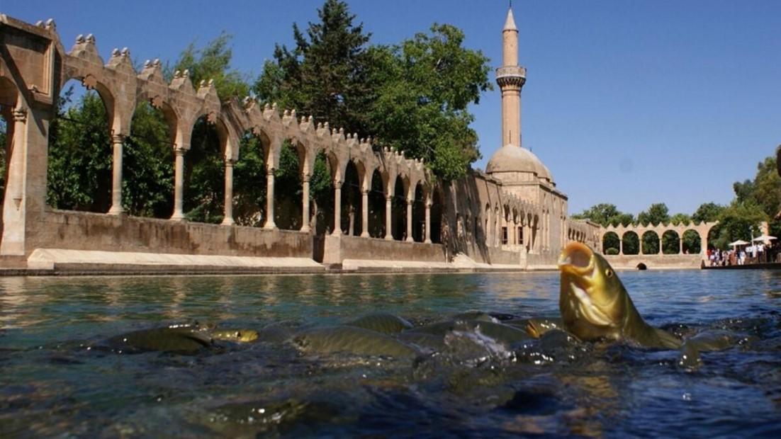 İstanbul Hareketli Uçaklı Eko Gap Turu 4 Gün