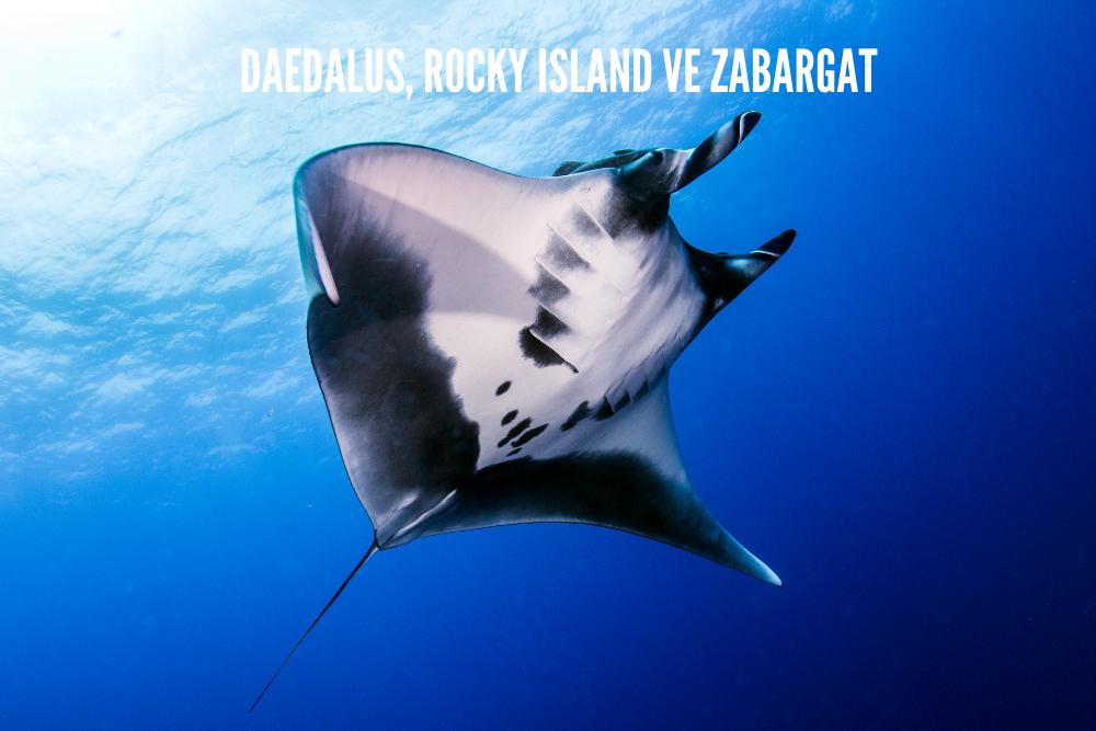 Kurban Bayramı Daedalus-Rocky Island ve Zabargat